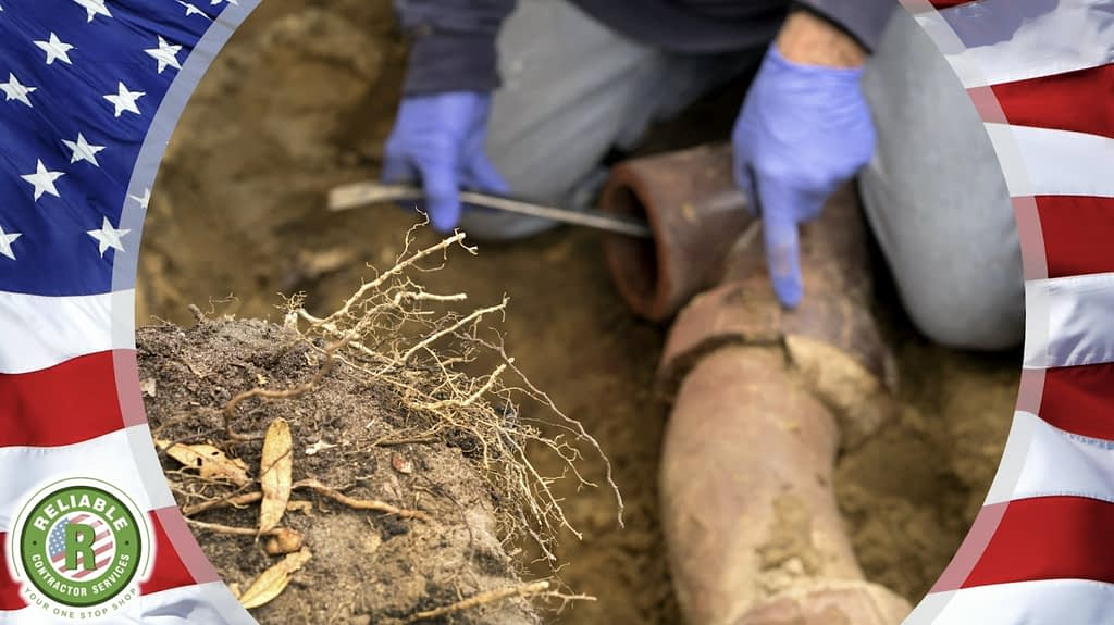 Are Roots Infiltrating Your Sewer Lines?