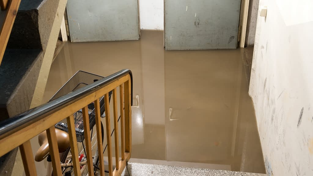 How to Avoid Water in My Basement?